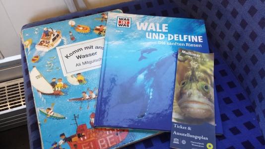 Komm mit ans Wasser, Wale und Delfine