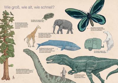 Page Tsou, Sachbuch, Wissenschaftsbuch