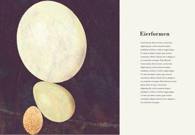 Britta Teckentrup, Illustration, Ostern, Eier