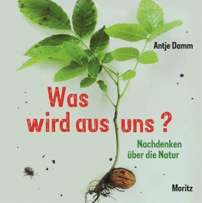 Antje Damm, Moritz Verlag, Ostern, Frühling, Bilderbuch, Philosophie