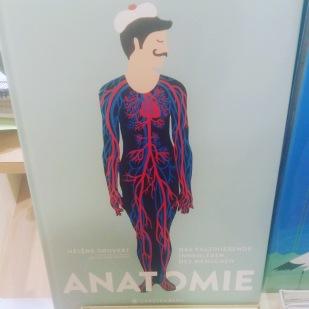 Sachbuch, Wissensbuch, Jugendbuch, Körper, Biologie