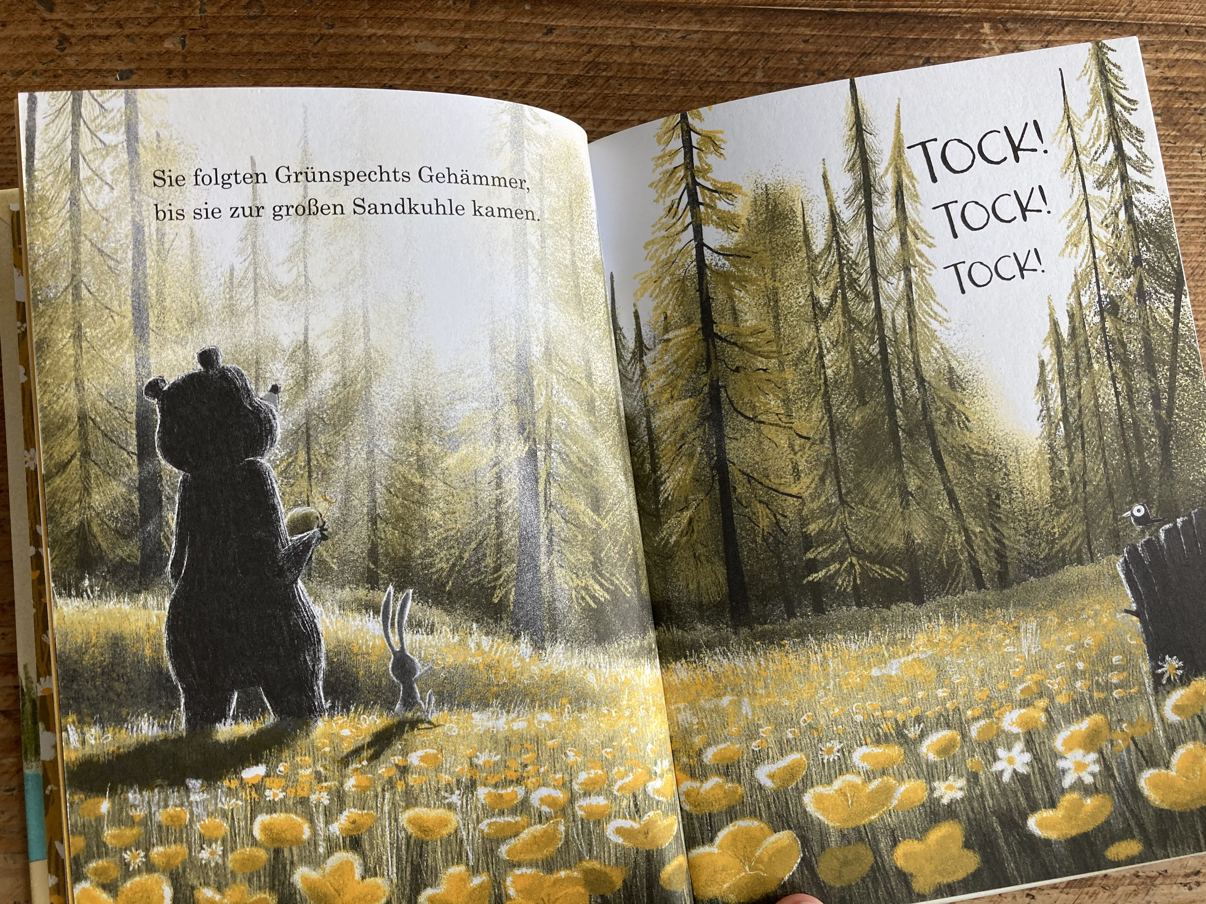 Julian Gough, Jim Field, Magellan, vorlesen, Kinderbuch